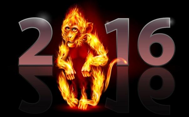 Mono de fuego 2